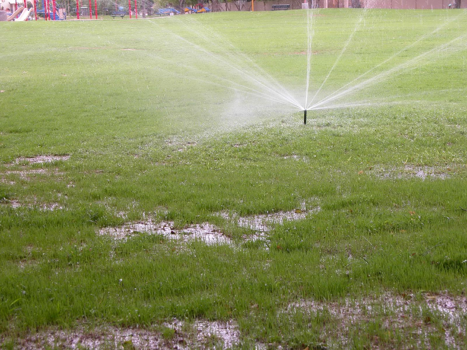 sprinklers for overseeding