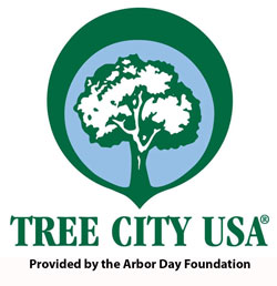 Tree City Logo Full Color