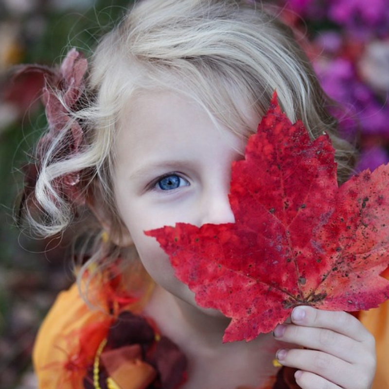 fall family events